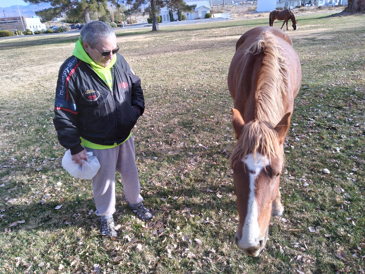 Selwyn Harris/Pahrump Valley Times Nye County Animal Control Officer Levi Gregory said there ar ...