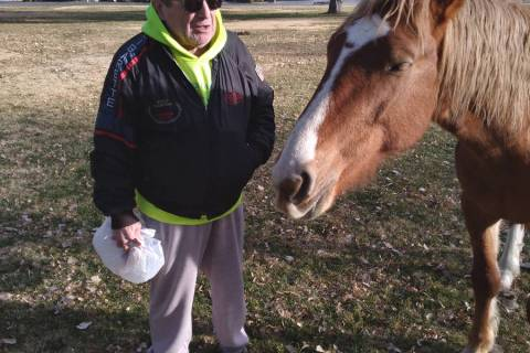 Selwyn Harris/Pahrump Valley Times Pahrump resident Joe Proenza visits with a wild mustang at t ...