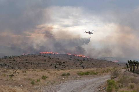 U.S. Forest Service The Cottonwood fire, burning in grass, sage and brush, mixed with some pin ...