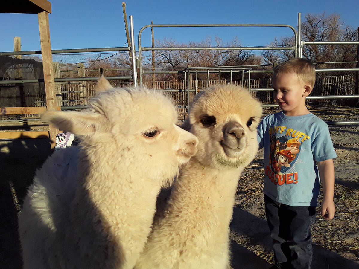 Selwyn Harris/Pahrump Valley Times The owner of Pahrump's Nature Health Farms, located at 351 B ...