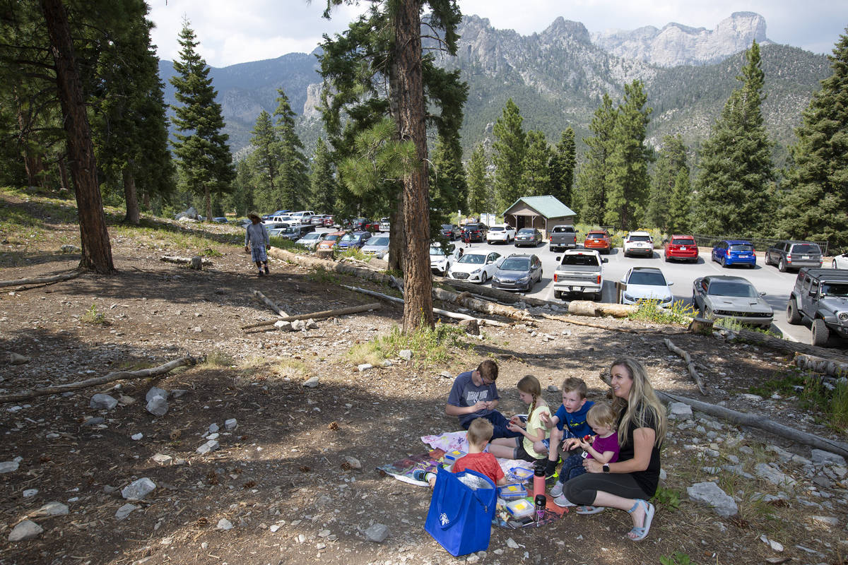 The Sorensen family of Las Vegas escaped the heat of the city to enjoy a picnic at Spring Mount ...