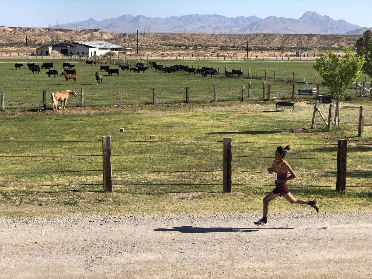 Tom Rysinski/Pahrump Valley Times The four-lap course Saturday at the Southern Region cross cou ...