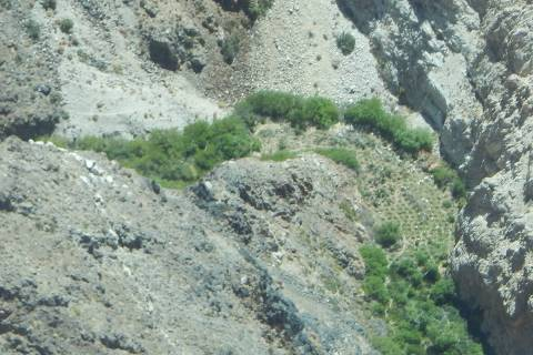 Special to the Pahrump Valley Times An illegal 40-acre marijuana grow operation was recently di ...