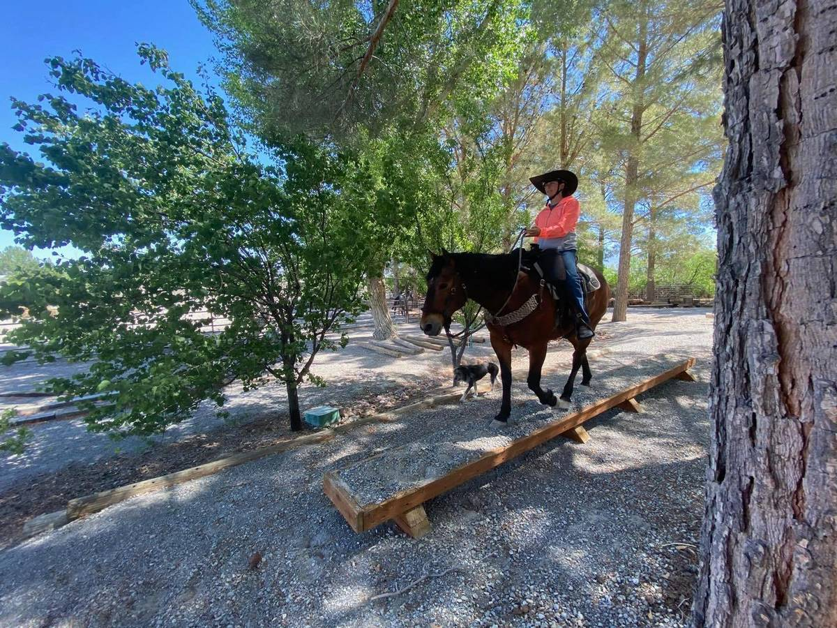 Nevada Discovery Ride Szesciorka said her ride was a good way to see the state and see parts of ...