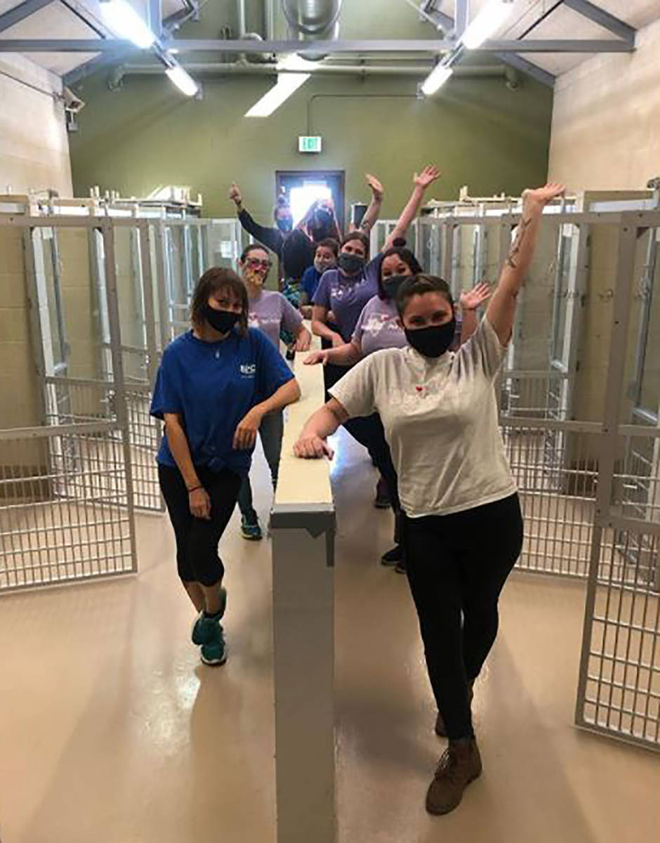 Special to the Pahrump Valley Times Volunteers and employees rejoice at empty kennels following ...