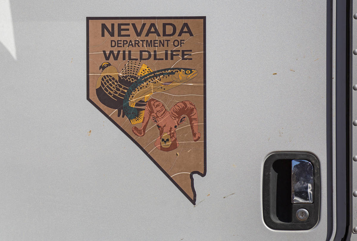 A Nevada Department of Wildlife logo is seen on a truck during an emergency water haul operatio ...